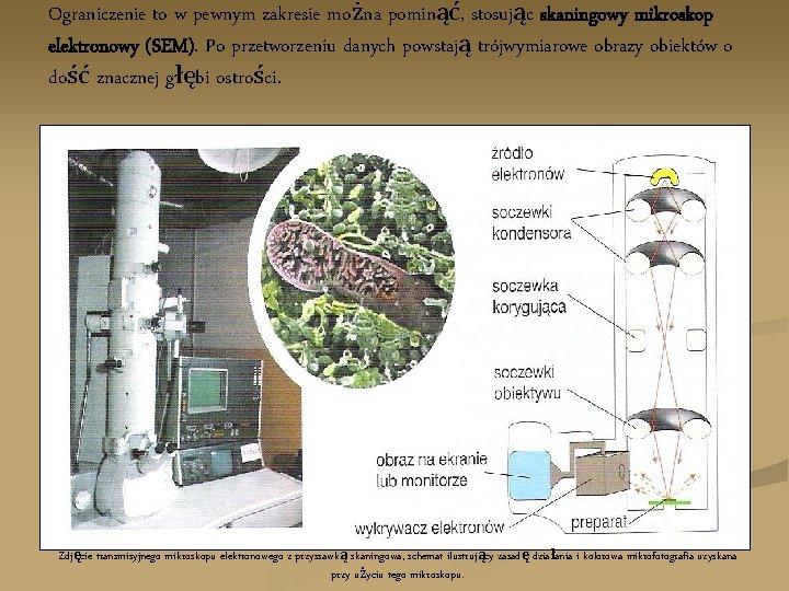 Ograniczenie to w pewnym zakresie można pominąć, stosując skaningowy mikroskop elektronowy (SEM). Po przetworzeniu