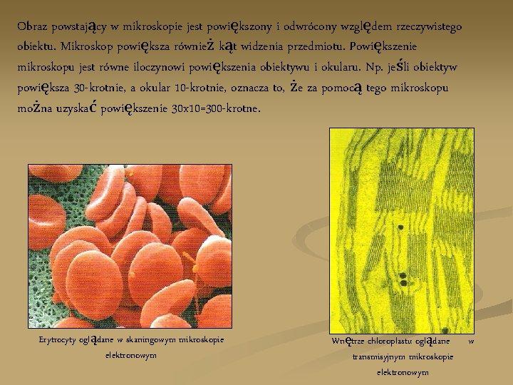 Obraz powstający w mikroskopie jest powiększony i odwrócony względem rzeczywistego obiektu. Mikroskop powiększa również