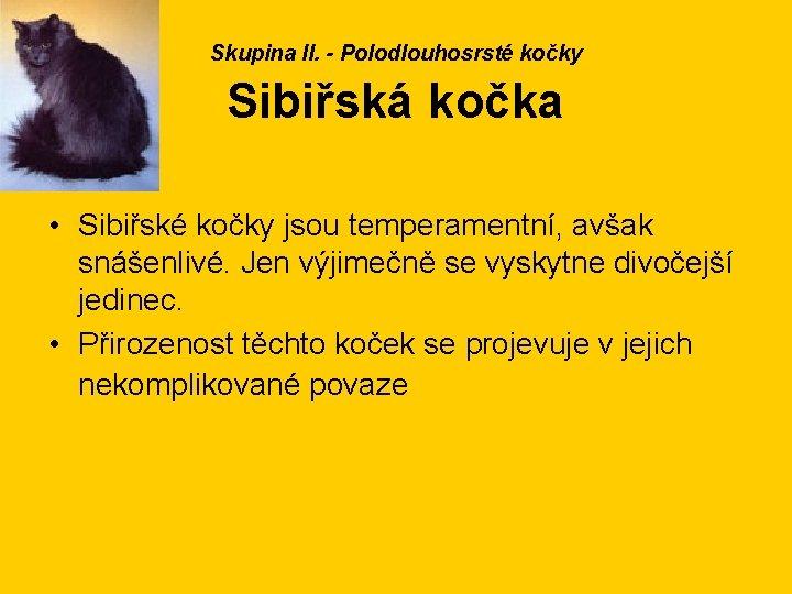 Skupina II. - Polodlouhosrsté kočky Sibiřská kočka • Sibiřské kočky jsou temperamentní, avšak snášenlivé.