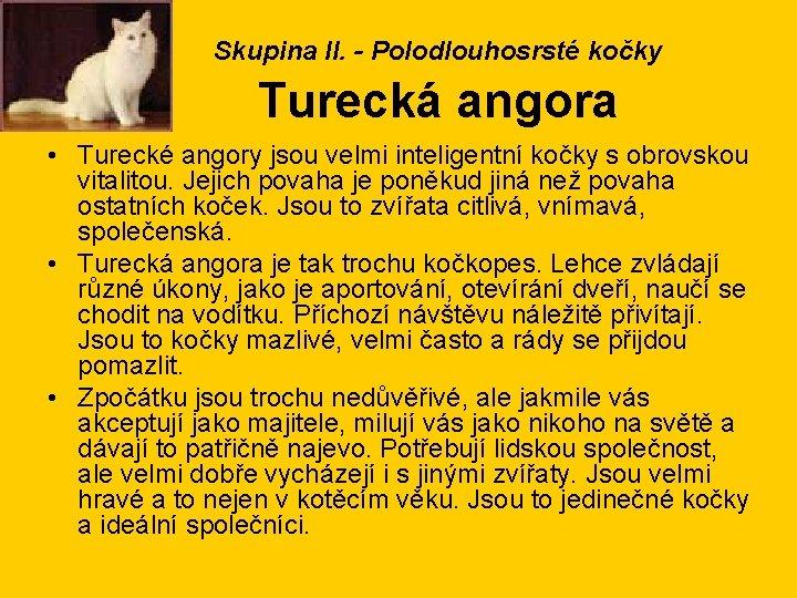 Skupina II. - Polodlouhosrsté kočky Turecká angora • Turecké angory jsou velmi inteligentní kočky