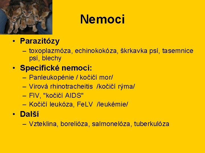 Nemoci • Parazitózy – toxoplazmóza, echinokokóza, škrkavka psí, tasemnice psí, blechy • Specifické nemoci: