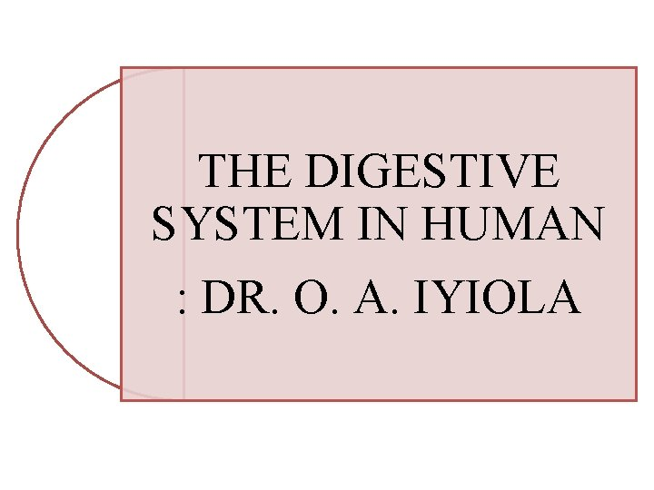 THE DIGESTIVE SYSTEM IN HUMAN : DR. O. A. IYIOLA