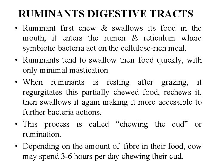 RUMINANTS DIGESTIVE TRACTS • Ruminant first chew & swallows its food in the mouth,