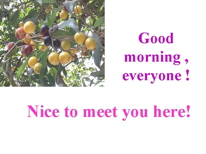 Good morning , everyone ! Nice to meet you here!