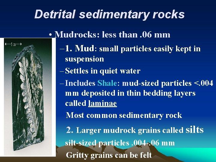 Detrital sedimentary rocks • Mudrocks: less than. 06 mm – 1. Mud: small particles