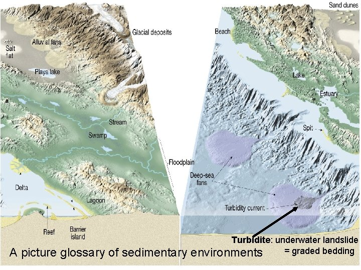 A picture glossary of sedimentary Turbidite: underwater landslide = graded bedding environments