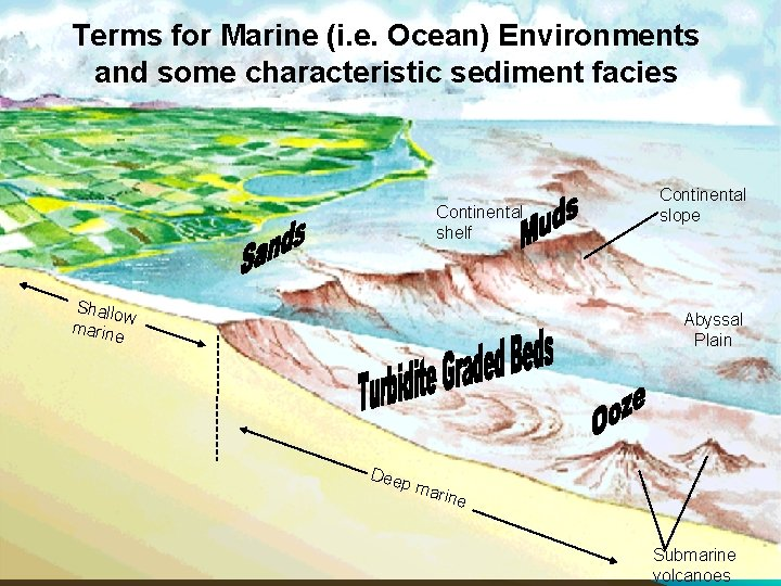 Terms for Marine (i. e. Ocean) Environments 6_27 and some characteristic sediment facies Continental