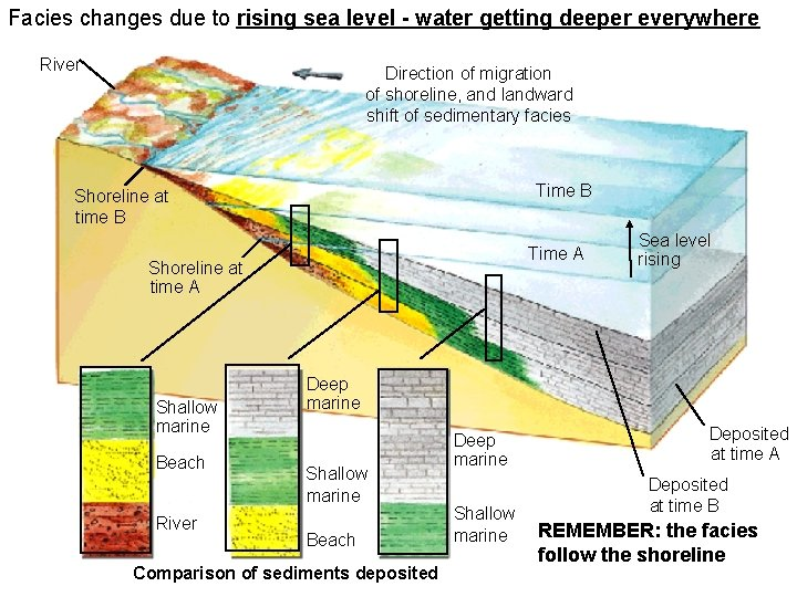 Facies changes due to rising sea level - water getting deeper everywhere River 6_29