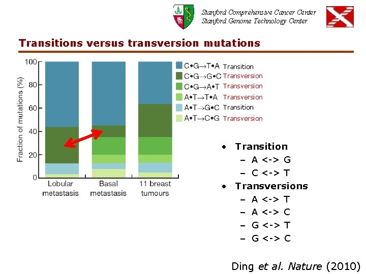 Stanford Comprehensive Cancer Center Stanford Genome Technology Center Transitions versus transversion mutations Transition Transversion