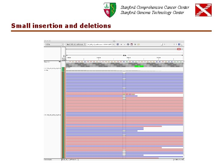 Stanford Comprehensive Cancer Center Stanford Genome Technology Center Small insertion and deletions