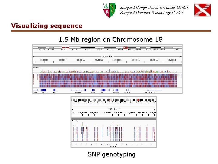 Stanford Comprehensive Cancer Center Stanford Genome Technology Center Visualizing sequence 1. 5 Mb region