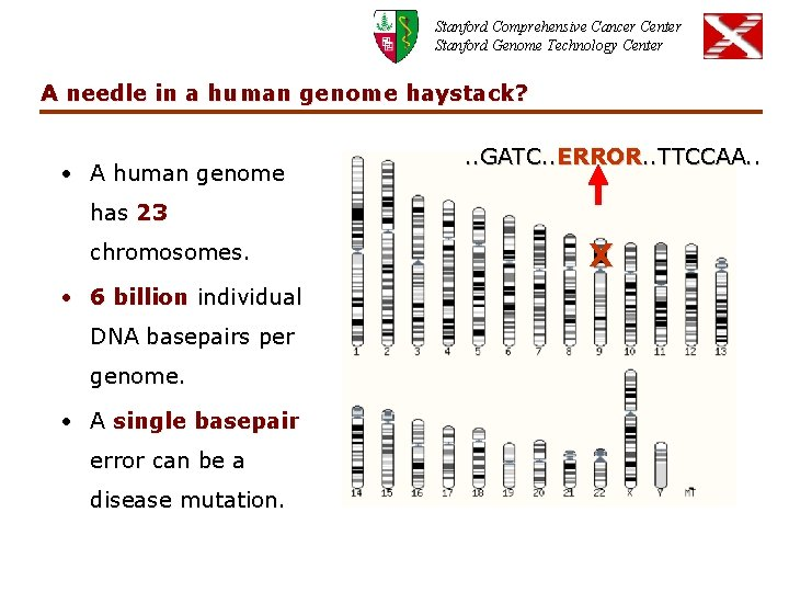 Stanford Comprehensive Cancer Center Stanford Genome Technology Center A needle in a human genome