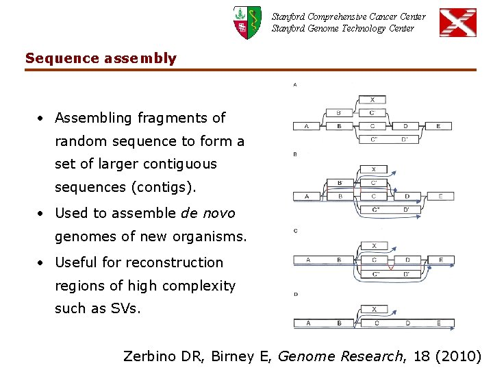 Stanford Comprehensive Cancer Center Stanford Genome Technology Center Sequence assembly • Assembling fragments of