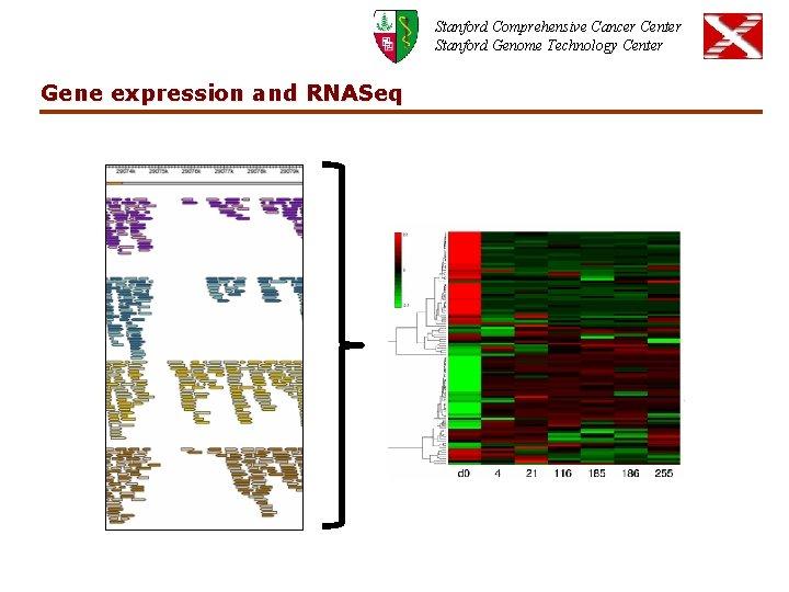 Stanford Comprehensive Cancer Center Stanford Genome Technology Center Gene expression and RNASeq