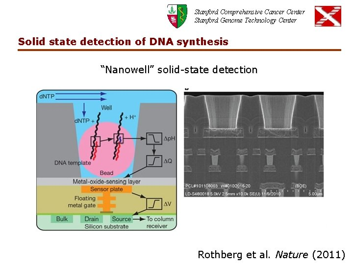 Stanford Comprehensive Cancer Center Stanford Genome Technology Center Solid state detection of DNA synthesis