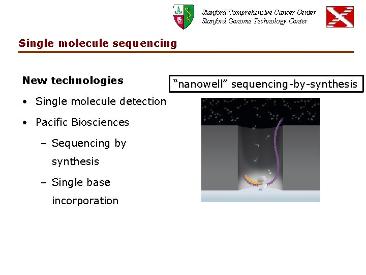 Stanford Comprehensive Cancer Center Stanford Genome Technology Center Single molecule sequencing New technologies •