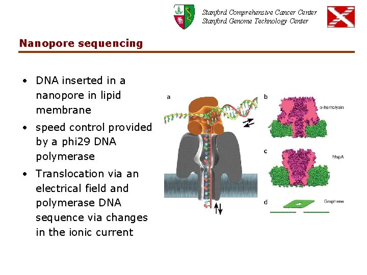 Stanford Comprehensive Cancer Center Stanford Genome Technology Center Nanopore sequencing • DNA inserted in