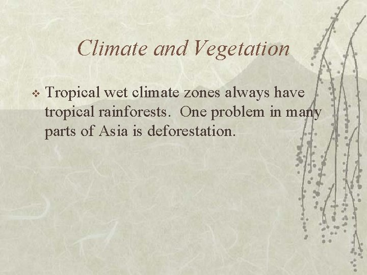 Climate and Vegetation v Tropical wet climate zones always have tropical rainforests. One problem