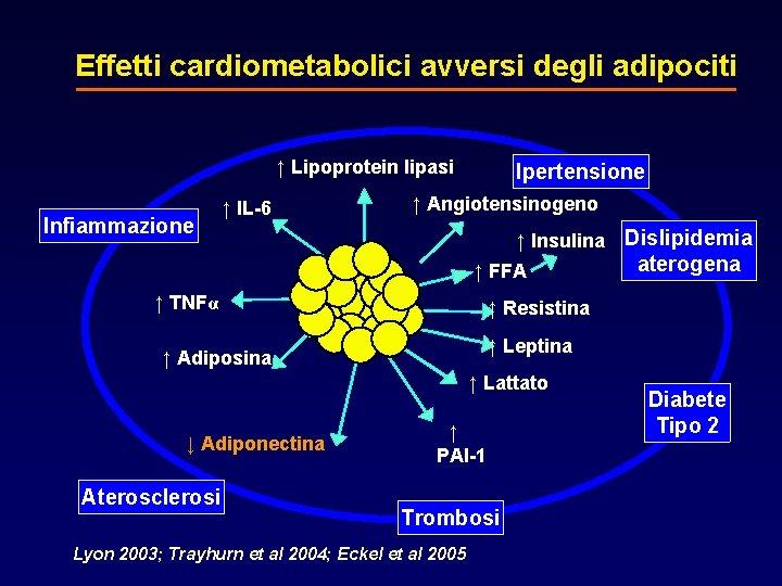 Effetti cardiometabolici avversi degli adipociti ↑ Lipoprotein lipasi Infiammazione ↑ Angiotensinogeno ↑ IL-6 ↑