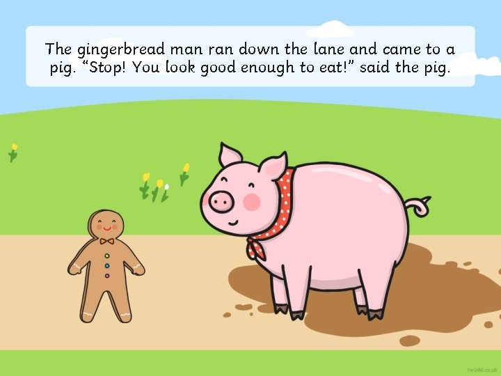 """The gingerbread man ran down the lane and came to a pig. """"Stop! You"""
