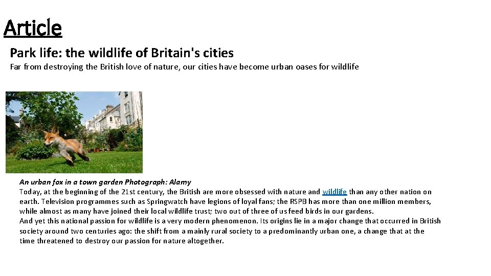 Article Park life: the wildlife of Britain's cities Far from destroying the British love