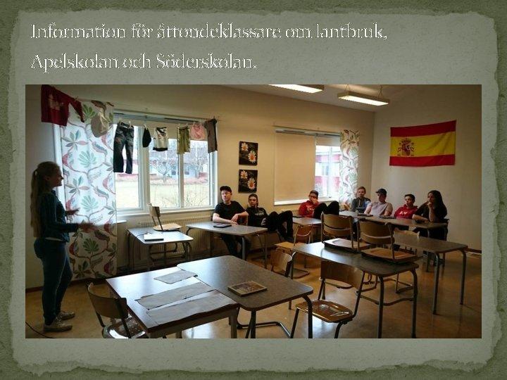Information för åttondeklassare om lantbruk, Apelskolan och Söderskolan.
