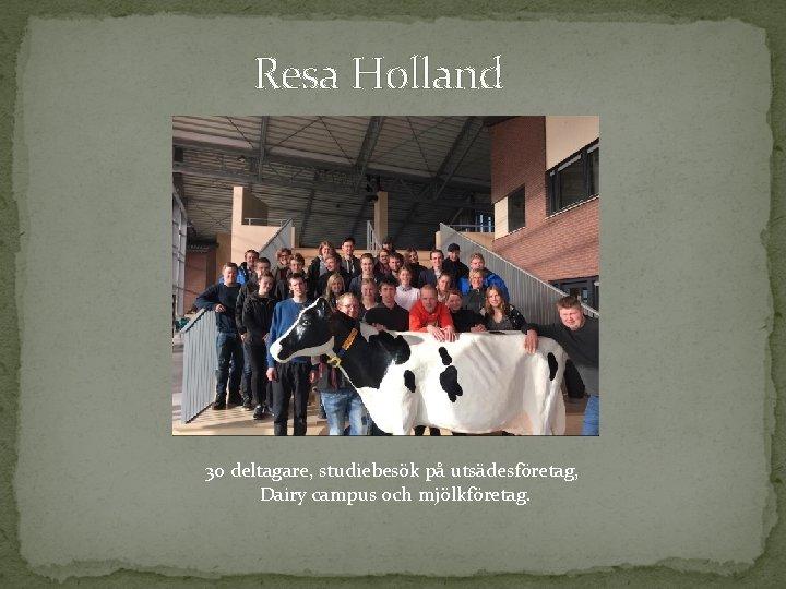 Resa Holland 30 deltagare, studiebesök på utsädesföretag, Dairy campus och mjölkföretag.
