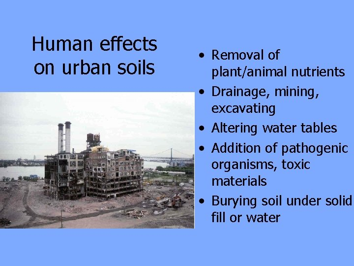 Human effects on urban soils • Removal of plant/animal nutrients • Drainage, mining, excavating