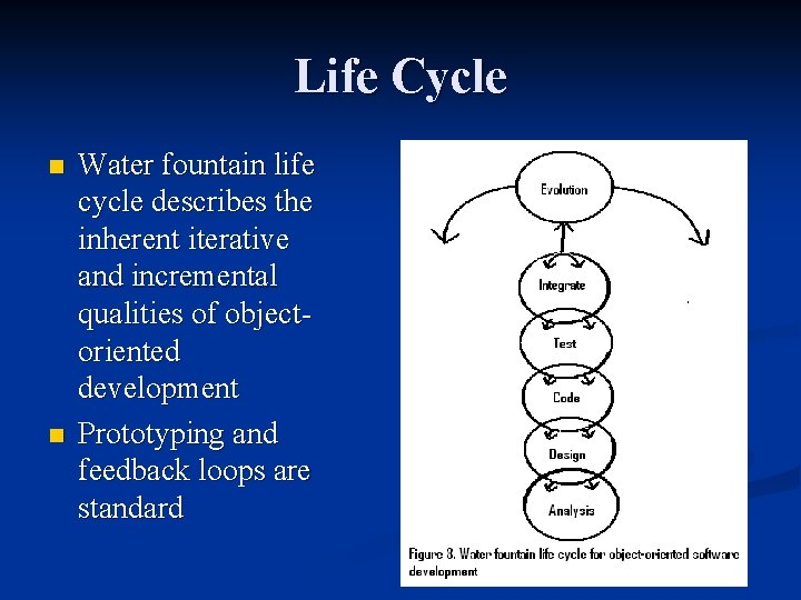 Life Cycle n n Water fountain life cycle describes the inherent iterative and incremental