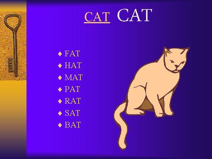 CAT ¨ FAT ¨ HAT ¨ MAT ¨ PAT ¨ RAT ¨ SAT ¨