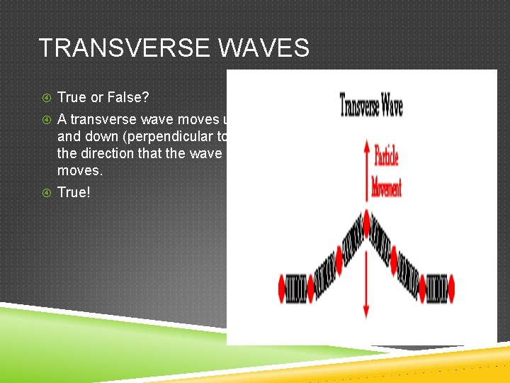 TRANSVERSE WAVES True or False? A transverse wave moves up and down (perpendicular to)