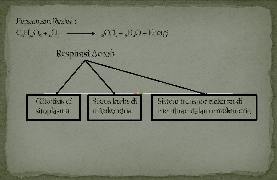 Persamaan Reaksi : C 6 H 12 O 6 + 6 O 2 6