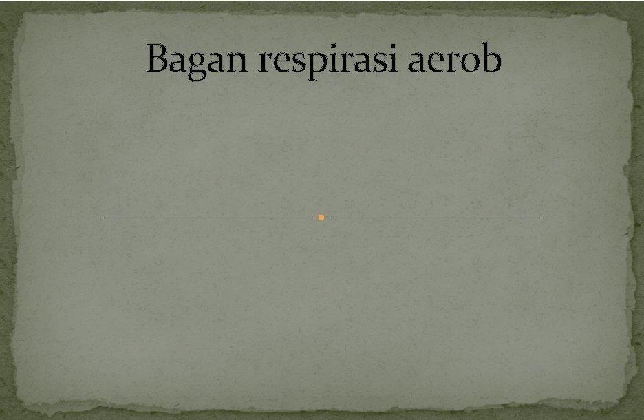Bagan respirasi aerob