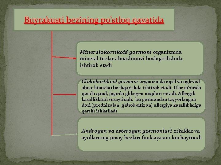 Buyrakusti bezining po'stloq qavatida Mineralokortikoid gormoni organizmda mineral tuzlar almashinuvi boshqarilishida ishtirok etadi Glukokortikoid
