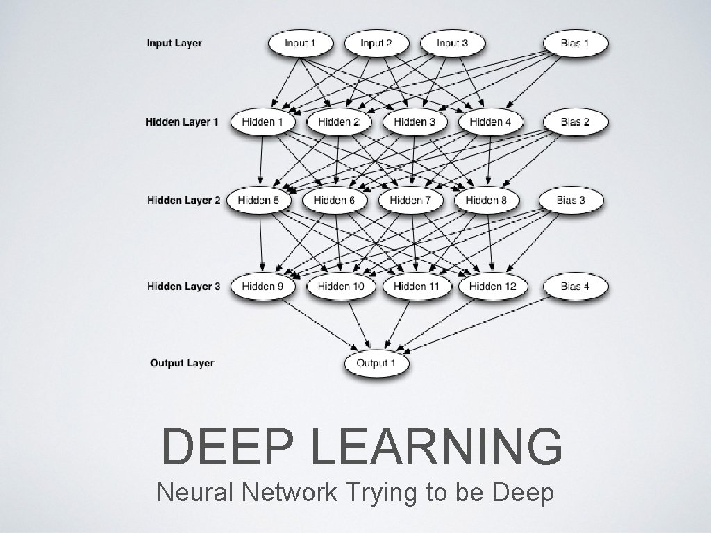 DEEP LEARNING Neural Network Trying to be Deep