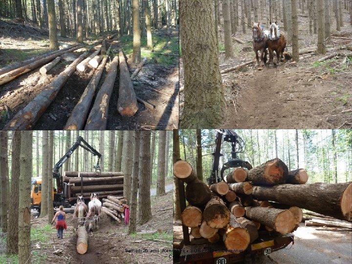 Samedi 26 avril : Rencontre « SOS Forêt en Cévennes » Collectif Bois 07