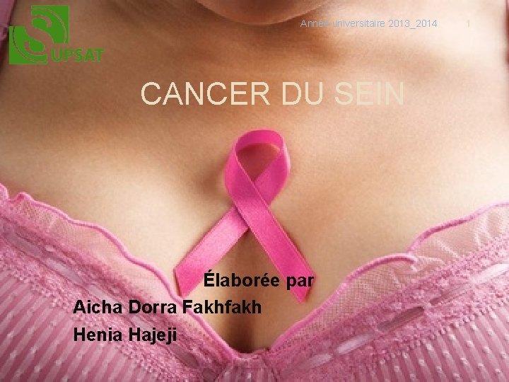 Année universitaire 2013_2014 CANCER DU SEIN Élaborée par Aicha Dorra Fakhfakh Henia Hajeji 1