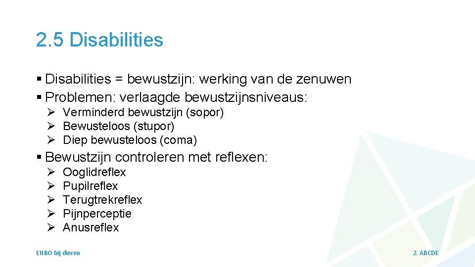 2. 5 Disabilities § Disabilities = bewustzijn: werking van de zenuwen § Problemen: verlaagde