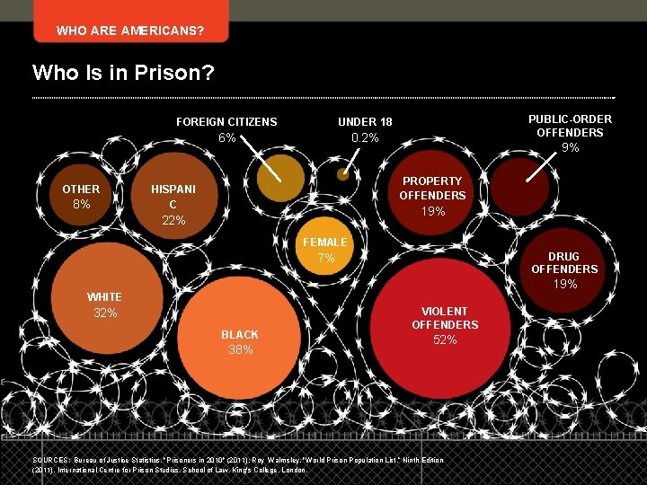 WHO ARE AMERICANS? Who Is in Prison? OTHER 8% FOREIGN CITIZENS UNDER 18 6%