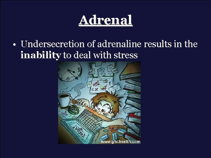 Adrenal • Undersecretion of adrenaline results in the inability to deal with stress