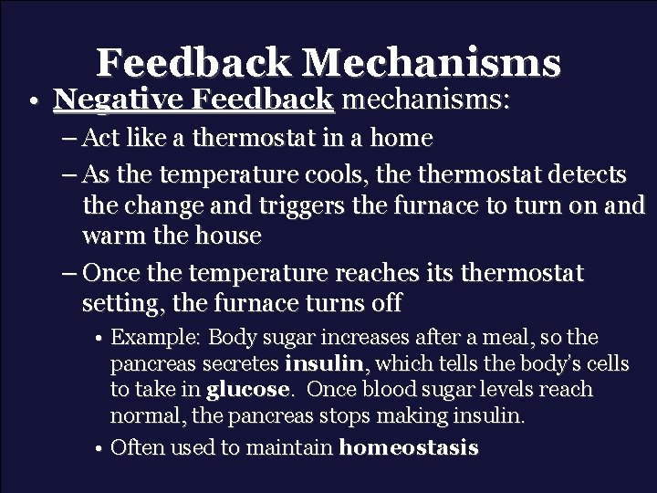 Feedback Mechanisms • Negative Feedback mechanisms: – Act like a thermostat in a home