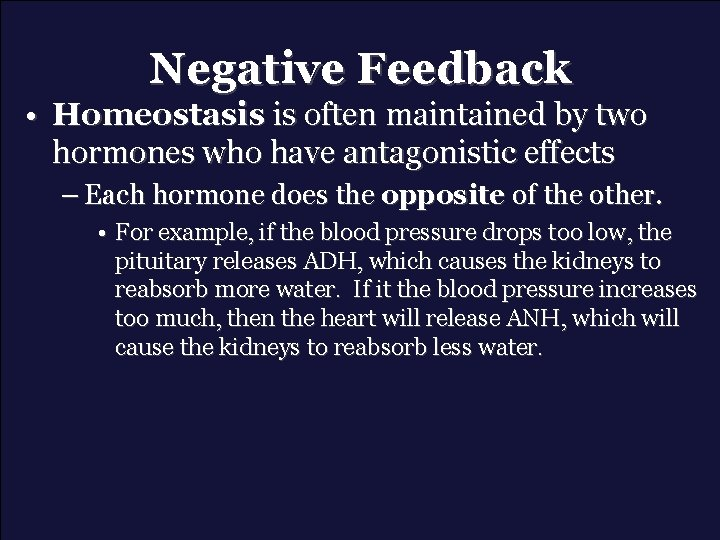 Negative Feedback • Homeostasis is often maintained by two hormones who have antagonistic effects