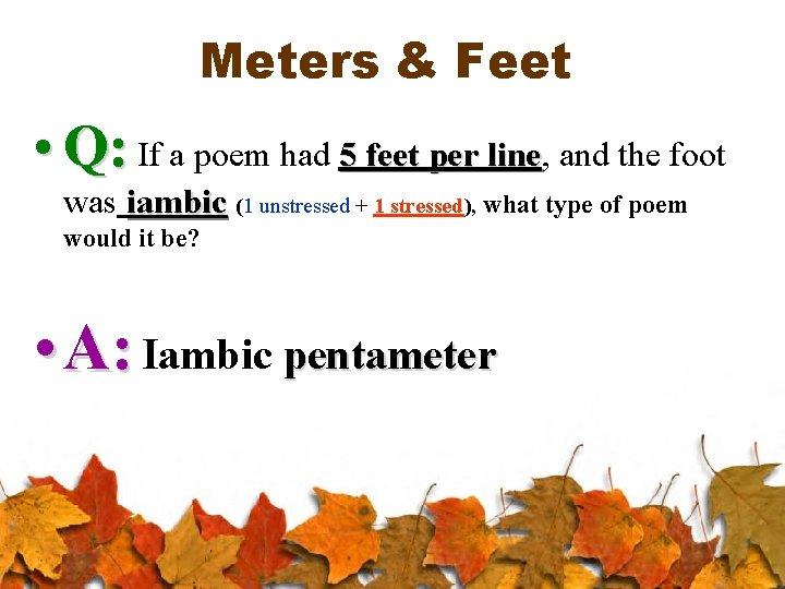 1 feet in meter