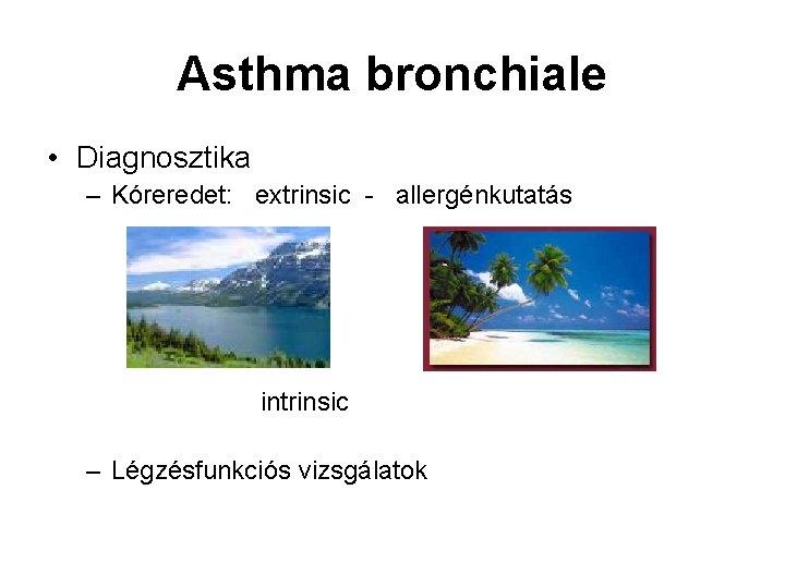 Asthma bronchiale • Diagnosztika – Kóreredet: extrinsic - allergénkutatás intrinsic – Légzésfunkciós vizsgálatok