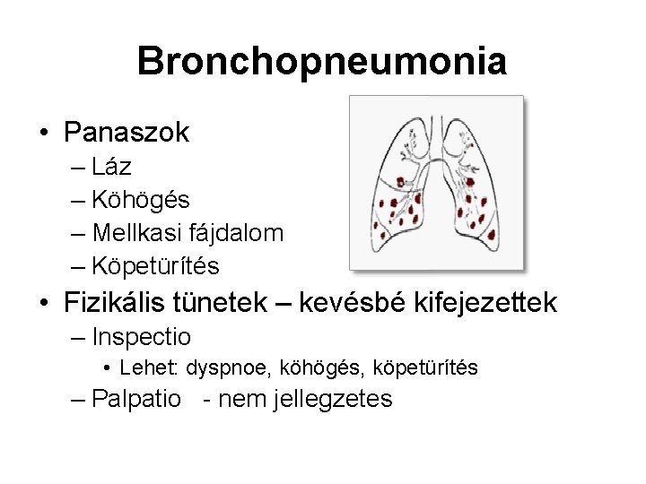 Bronchopneumonia • Panaszok – Láz – Köhögés – Mellkasi fájdalom – Köpetürítés • Fizikális