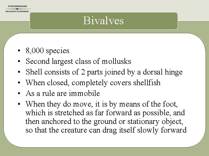 Bivalves • • • 8, 000 species Second largest class of mollusks Shell consists