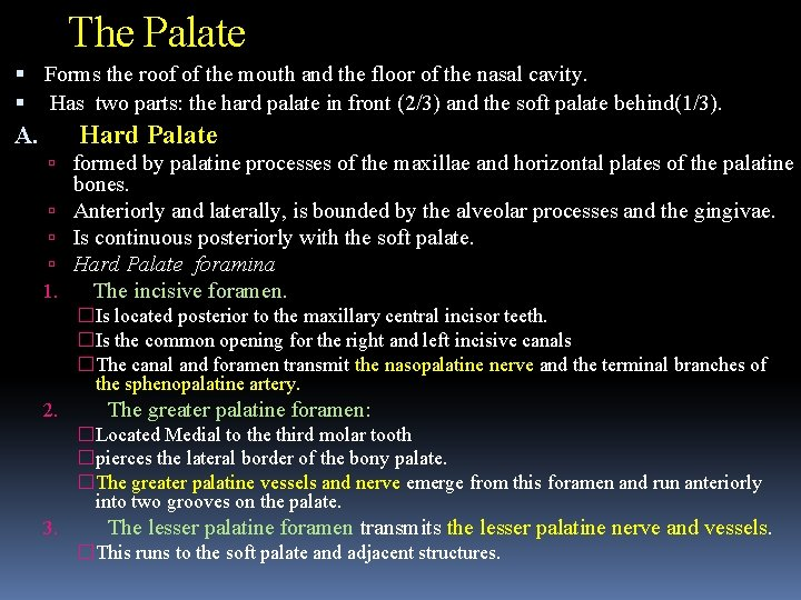 The Palate Forms the roof of the mouth and the floor of the nasal