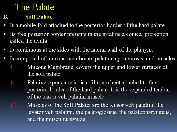 The Palate B. Soft Palate Is a mobile fold attached to the posterior border