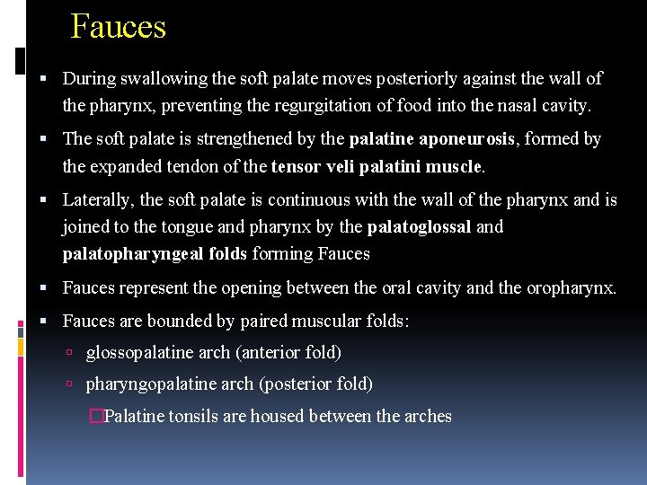 Fauces During swallowing the soft palate moves posteriorly against the wall of the pharynx,