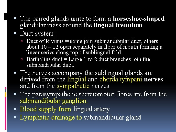 The paired glands unite to form a horseshoe-shaped glandular mass around the lingual